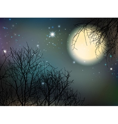 Night With Big Moon vector image