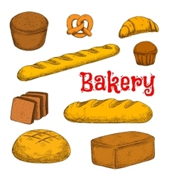 Colorful sketched bakery and pastry products vector image