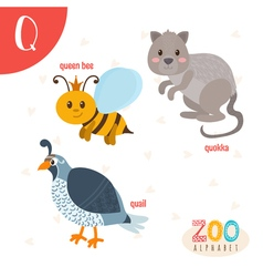Letter Q Cute animals Funny cartoon animals in vector image