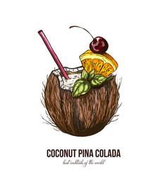 coconut pina colada vector image vector image