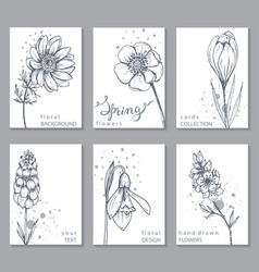 collection of 6 cards with hand drawn spring vector image vector image