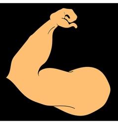 Flex arm bodybuilder with big muscles vector image