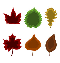 set of leaf icon cartoon style vector image
