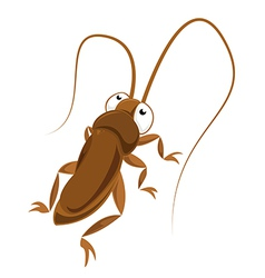 Big eyed cockroach vector