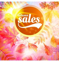 Autumn sale fall yellow leaves nature background vector image