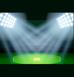 Background for posters night cricket stadium in vector