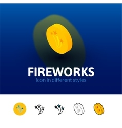 Fireworks icon in different style vector