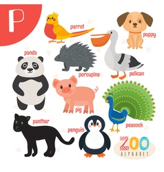 Letter P Cute animals Funny cartoon animals in vector image vector image