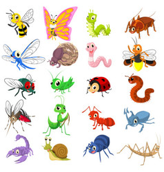Set of Funny Insects Cartoon Character Flat Design vector image vector image