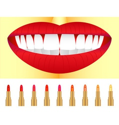 Set of lipstick vector image vector image