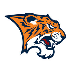 tiger head sport mascot vector image