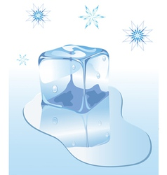 Ice Cube vector image