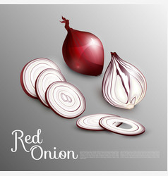 Natural red onion concept vector