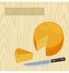 Circle of cheese vector