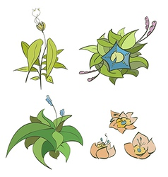 flora elements 01 vector image vector image