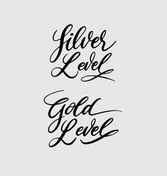 silver and gold level handwriting calligraphy vector image vector image