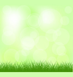Natural light green grass vector