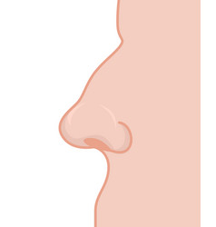 Nose profile detail of mans face nostrils and vector