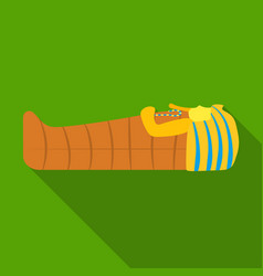 Pharaoh sarcophagus icon in flat style isolated on vector