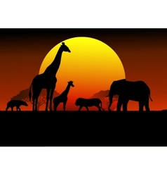 Wildlife silhouette vector