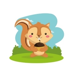 Squirrel cartoon icon woodland animal vector