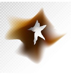 Burnt hole in form of star with dirt around vector