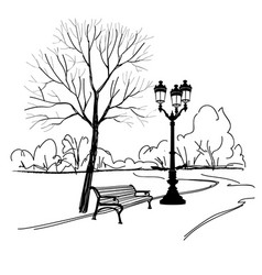 Bench in park with tree and streetlamp city park vector