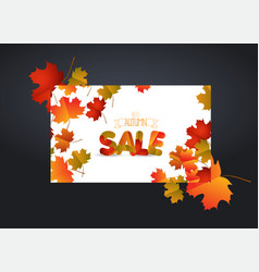 White blank with autumn maple leaves on vector