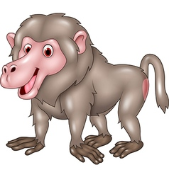 Cartoon funny baboon isolated on white background vector