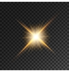 Gold bright star light flash vector image