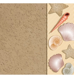 Sand with Seashells vector image vector image
