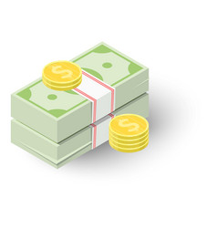 Two stacks of money and coins icon vector