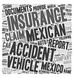 Mexican Car Insurance What To Do If You Get Into vector image vector image