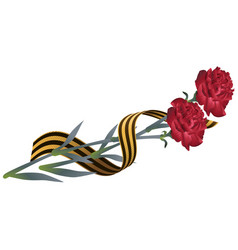Red carnation flower and st georges ribbon vector