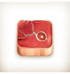 Steak app icon vector image vector image