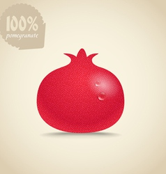 Cute fresh red pomegranate vector