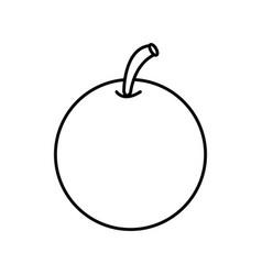 outline orange fruit citrus nature food vector image vector image