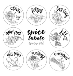 Spices and herbs labels contour spicy set vector