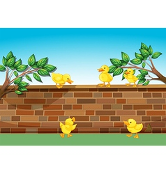 A wall with five ducklings vector