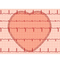 heartbeat electrocardiogram vector image