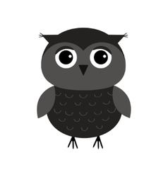 Cute owl bird character flat design isolated vector