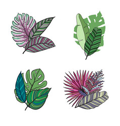 Hand drawn tropical leaves color set set vector