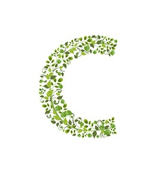 Spring green leaves eco letter C vector image vector image