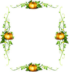 Frame template with pumpkin plants vector