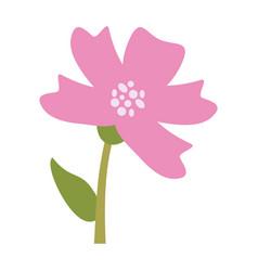 Beautiful flower bouquet vector