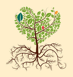 roots tree vector image vector image