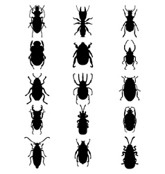 Silhouettes of bugs vector