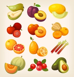 Set of colorful exotic fruit vector image