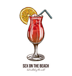 sex on the beach cocktail vector image