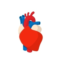 Human heart cartoon icon vector